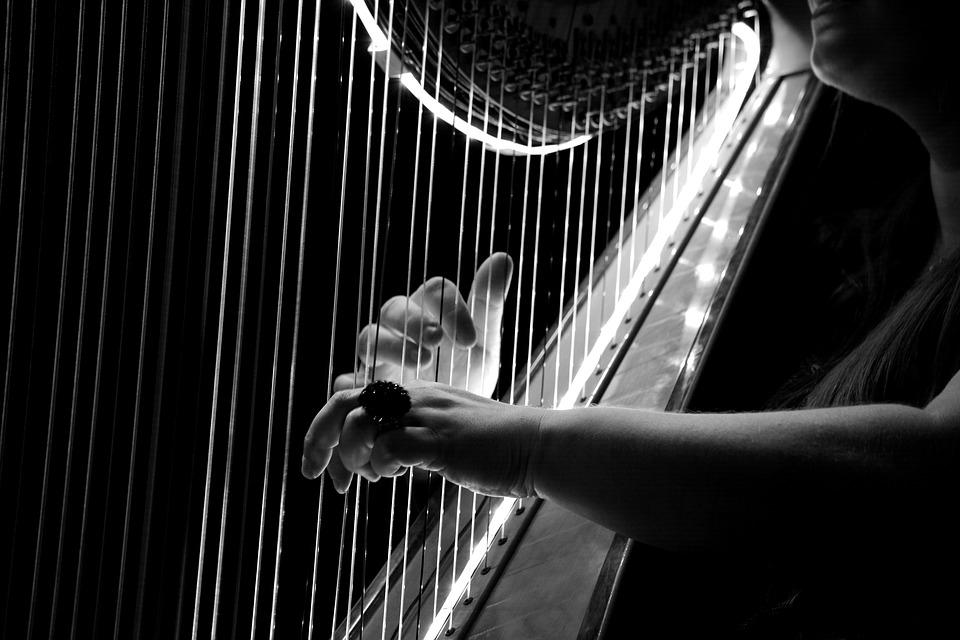 Saint Saëns, Tchaikovsky, Mozart ou Gounod pour le concert du nouvel an à Tarbes