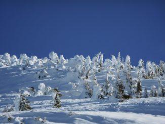 Météo France annonce que les importantes chutes de neige constatées dans les Pyrénées pourrait donner jusqu'à 1 mètre de neige fraîche supplémentaire. 1 mètre de neige fraîche supplémentaire ! Dans certaines vallées des Pyrénées, il neige tellement qu'en seulement deux ou trois jours, le cumul pourrait atteindre 1 mètre de neige fraîche. Au delà de 1500 mètres et dans les vallées de l'Ariège, de la Haute Garonne ou des Hautes Pyrénées, la nouvelle couche de neige devrait atteindre 60 à 80 centimètres mercredi matin. Des chutes de neige déjà exceptionnelles qui aggravent le risque d'avalanches dans tout le massif. Les autorités : préfectures, gendarmeries de haute montagne, appellent les vacanciers à la plus grande prudence ces prochaines heures et ces prochains jours dans tout le massif. Les trois départements Ariège, Haute Garonne et Hautes Pyrénées sont maintenus au moins jusqu'à mercredi, en alerte météo vigilance orange. Le soleil et une baisse des températures sont attendus à partir de mercredi.