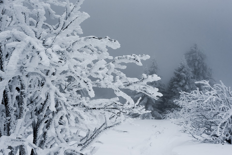 M t o tarbes offensive de l 39 hiver en ce premier jour du printemps - 1er jour du printemps ...