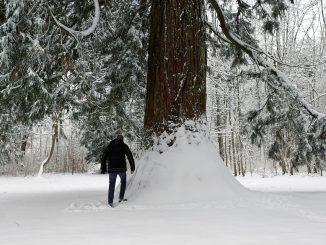 Retour du froid (et de l'hiver) ce week end à Tarbes