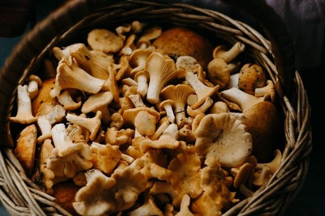 Figues, champignons et poires au marché Marcadieu