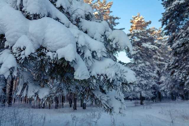Importantes chutes de neige sur les Pyrénées, quelques flocons à Tarbes